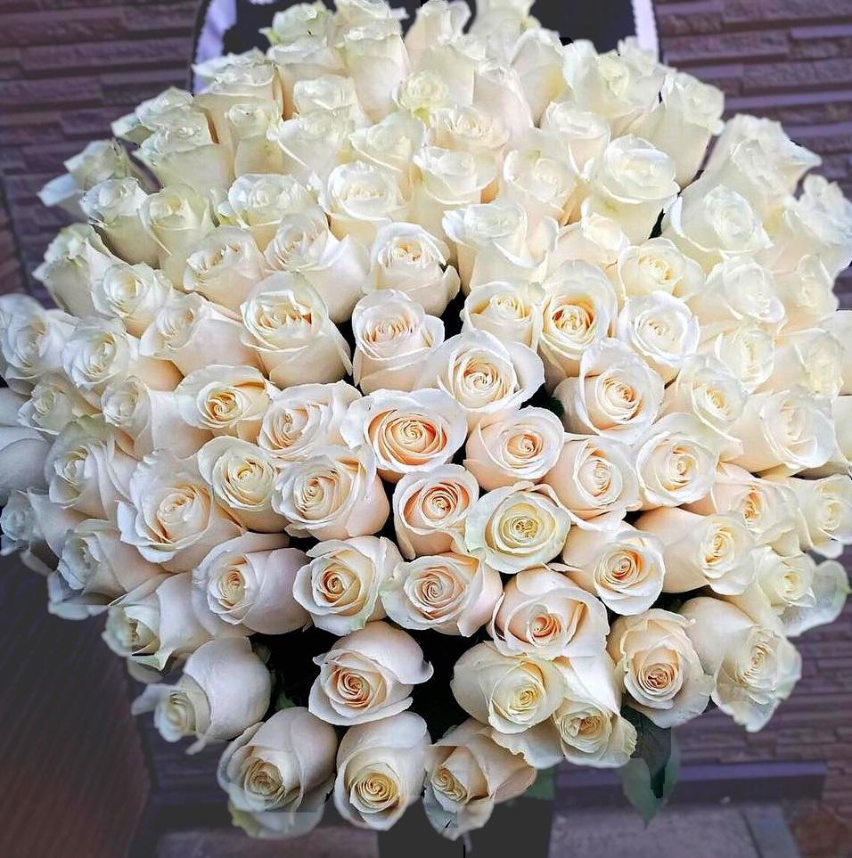 Картинку с большим букетом белых роз