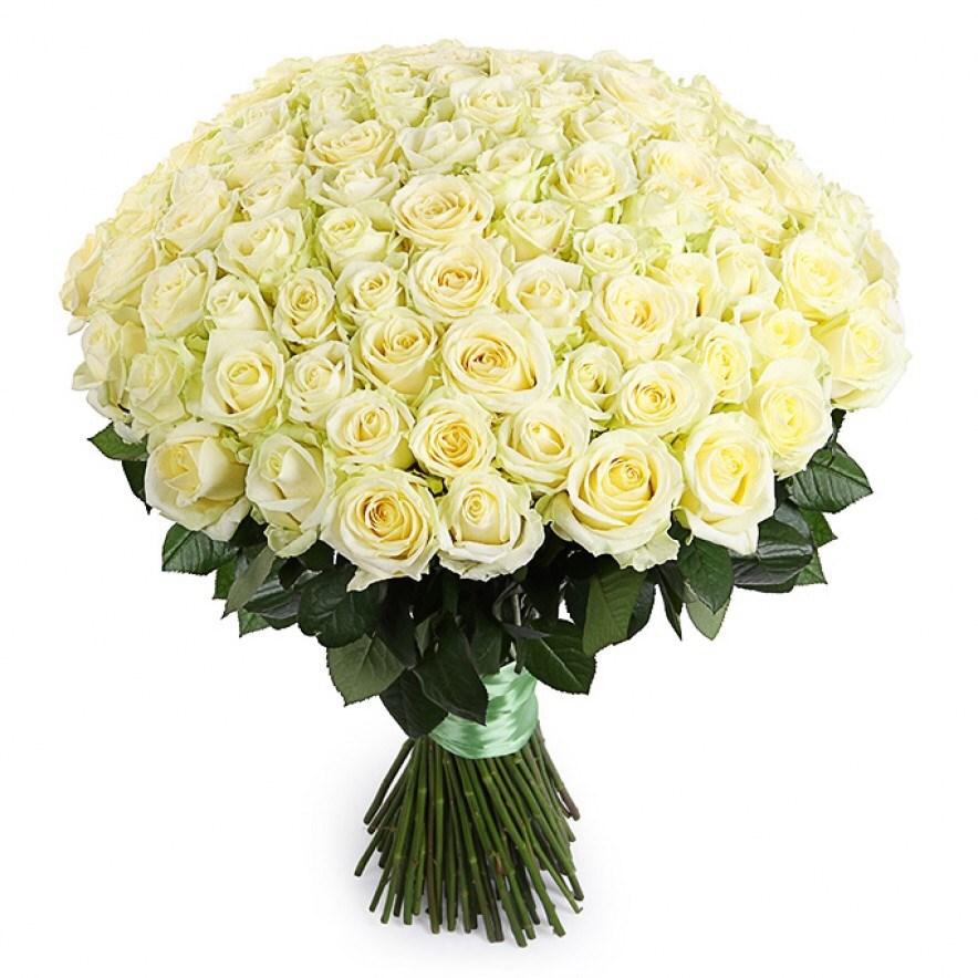 Белые картинки с букетами цветов